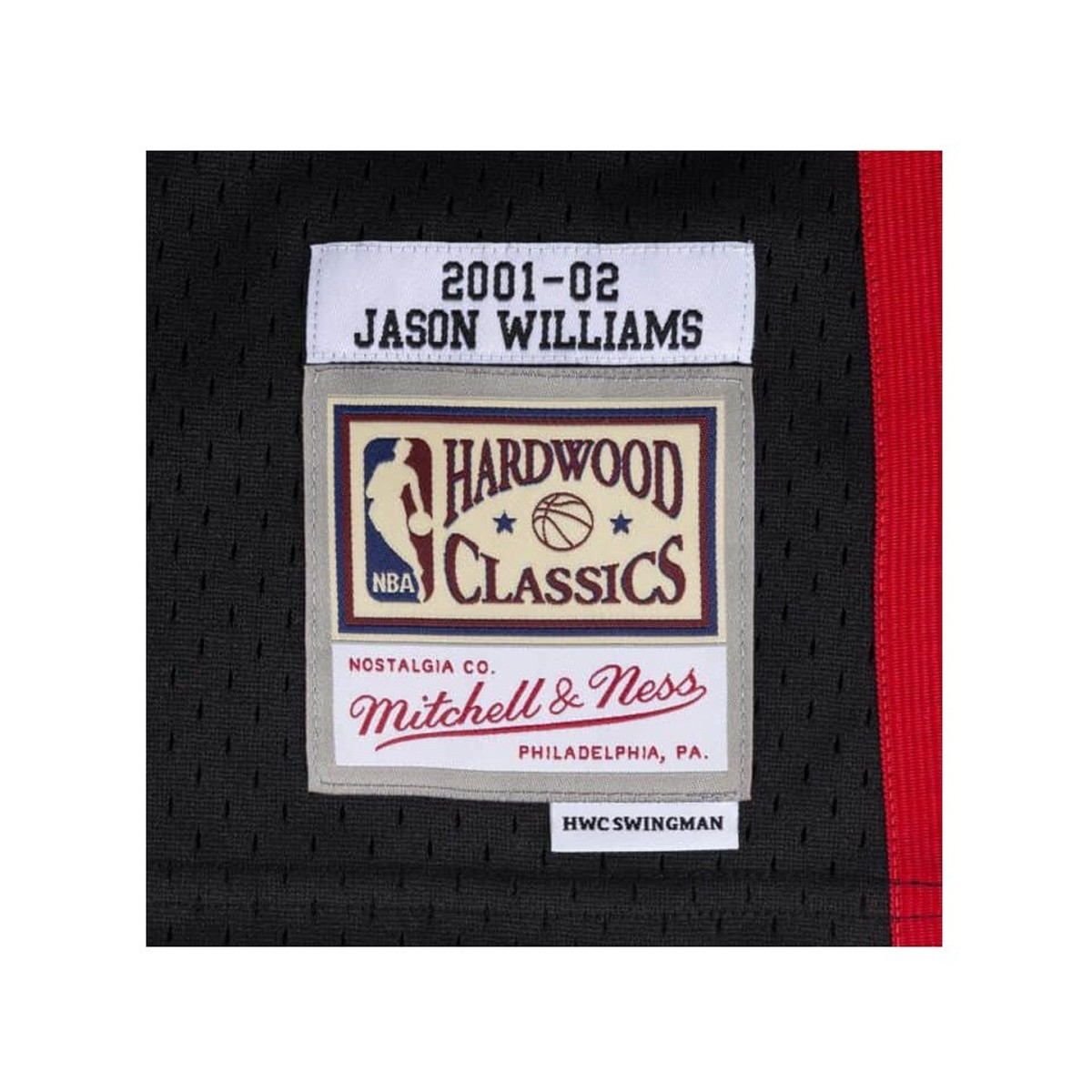 Mitchell & Ness Swingman Jersey Grizzlies Williams '2001-02'-SMJYCP19062