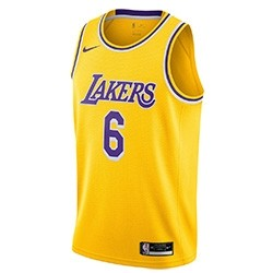 Nike Jr NBA Los Angeles Lakers Swingman Jersey Lebron James 21/22 'Icon Edition'