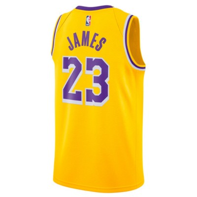 Nike NBA Lakers Swingman Jersey Lebron James 'Icon Edition' AA7099-741
